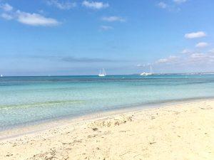 #Beach #Mallorca #EsTrenc